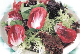 akdeniz-salatasi